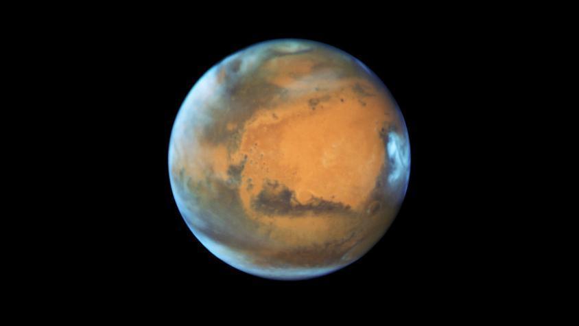 Musk planea enviar a un millón de personas a Marte en 2050 y construir una flota de más de mil vehículos espaciales Starship para exportarlos allí.