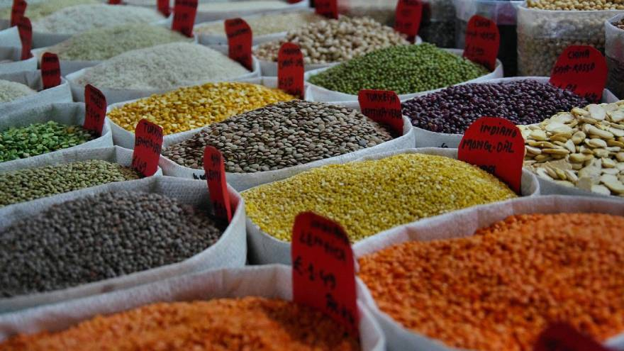 Las legumbres contienen proteínas de origen vegetal