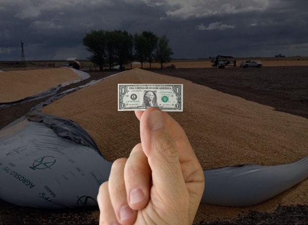 La urgencia de caja no permite esperar hasta la cosecha post-verano: en el Gobierno quieren que los productores adelanten la liquidación