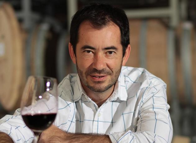 Los vinos tintos, blancos y espumantes de Argentina más destacados ...