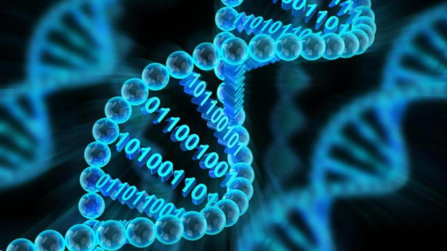 La manipulación del genoma humano se puede