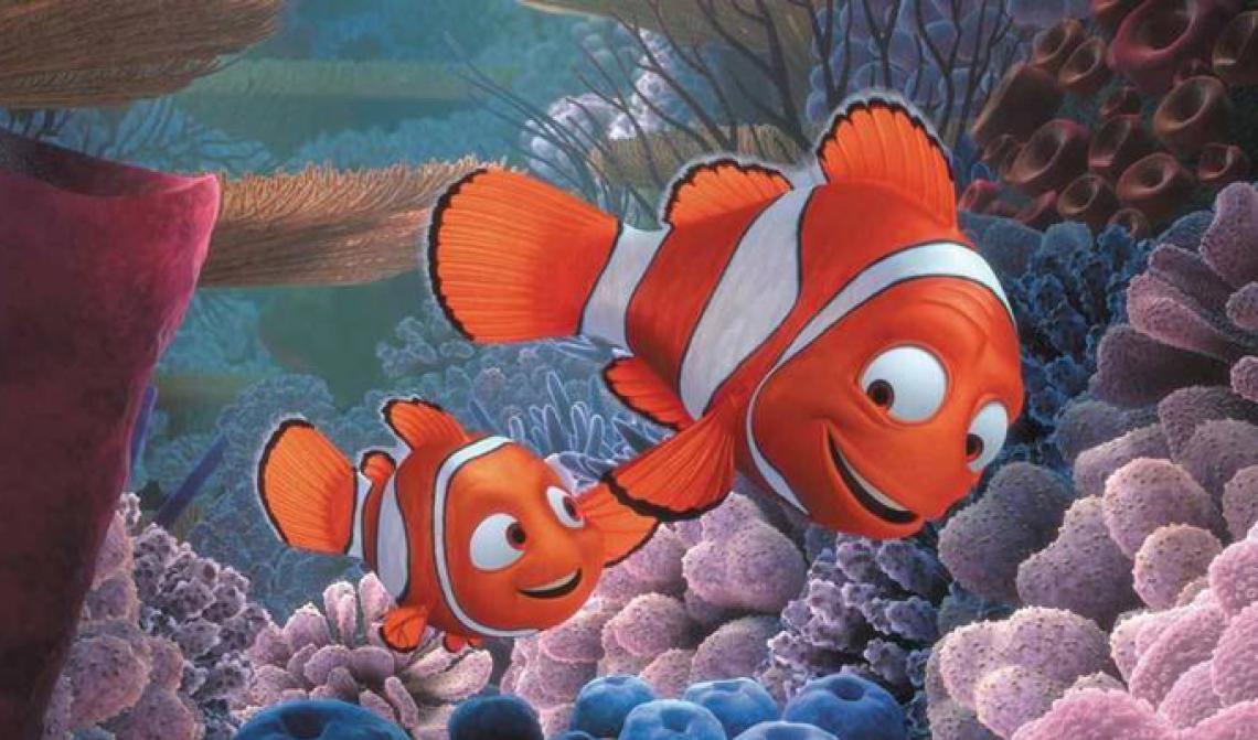 Las frases motivadoras en Buscando a Nemo alientan a seguir adelante pese a los golpes