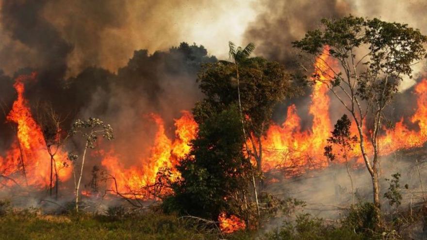 Diputados aprobó el proyecto que busca evitar prácticas especulativas en terrenos incendiados