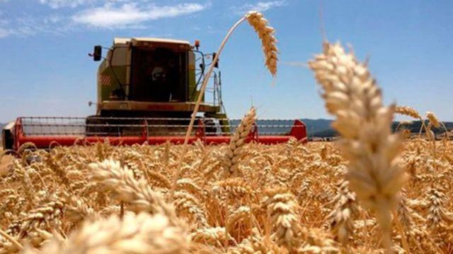 Cepo exportador: el campo arranca la semana con asambleas
