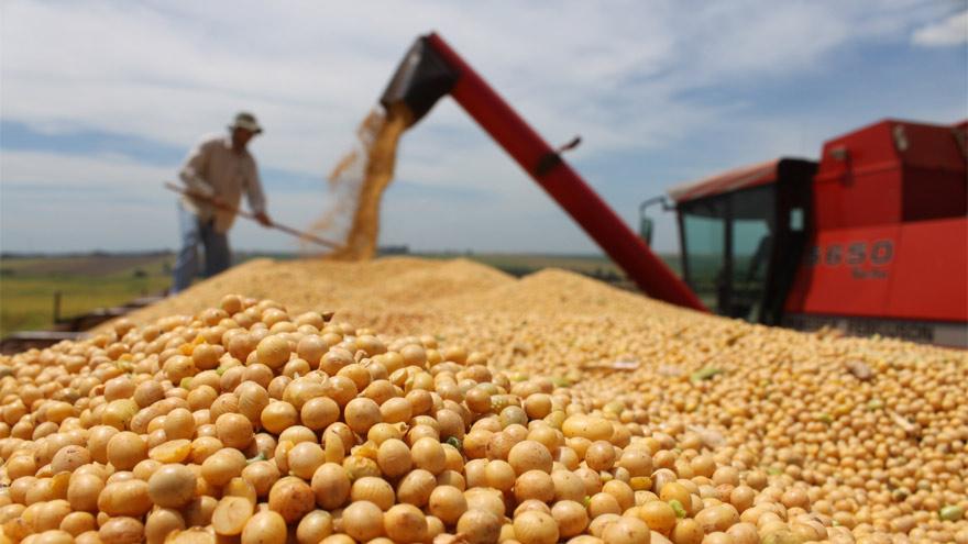 La soja se ubica en los valores más altos de los últimos 4 años.