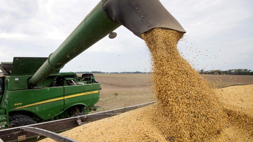 La caída en la liquidación de divisas por exportación agrícola, en el trasfondo de la estatizacio´n de Vicentin