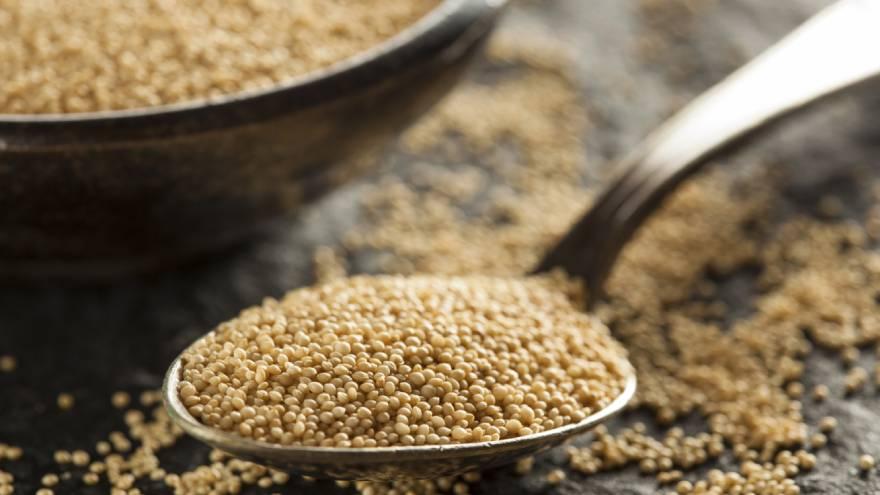 El amaranto es otra de las semillas que puede considerarse un