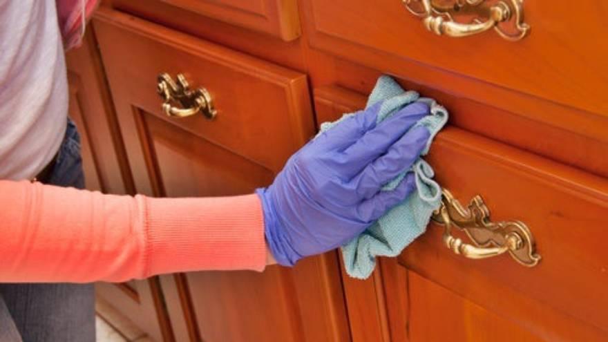 Limpiar periódicamente es fundamental para evitar la presencia de la araña