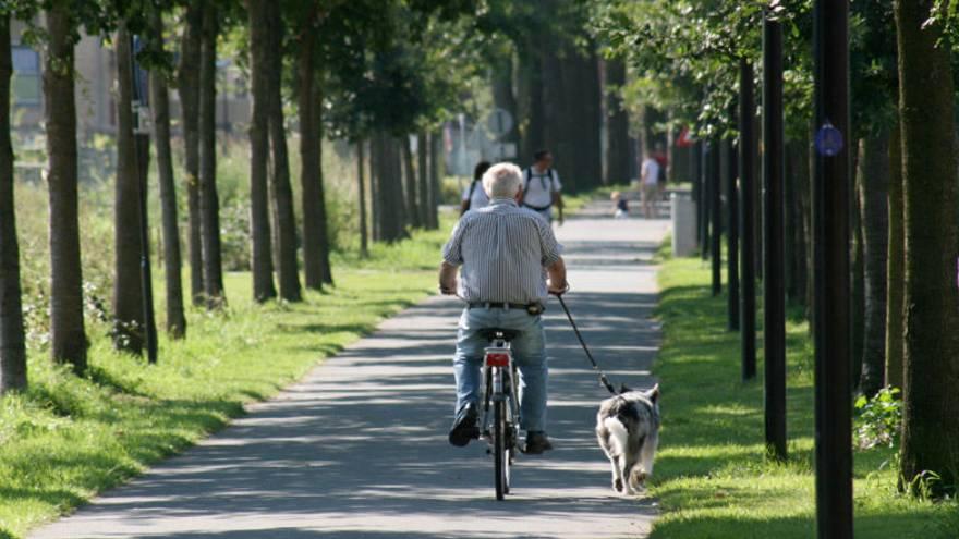 Los adultos mayores también deben llevar una vida activa