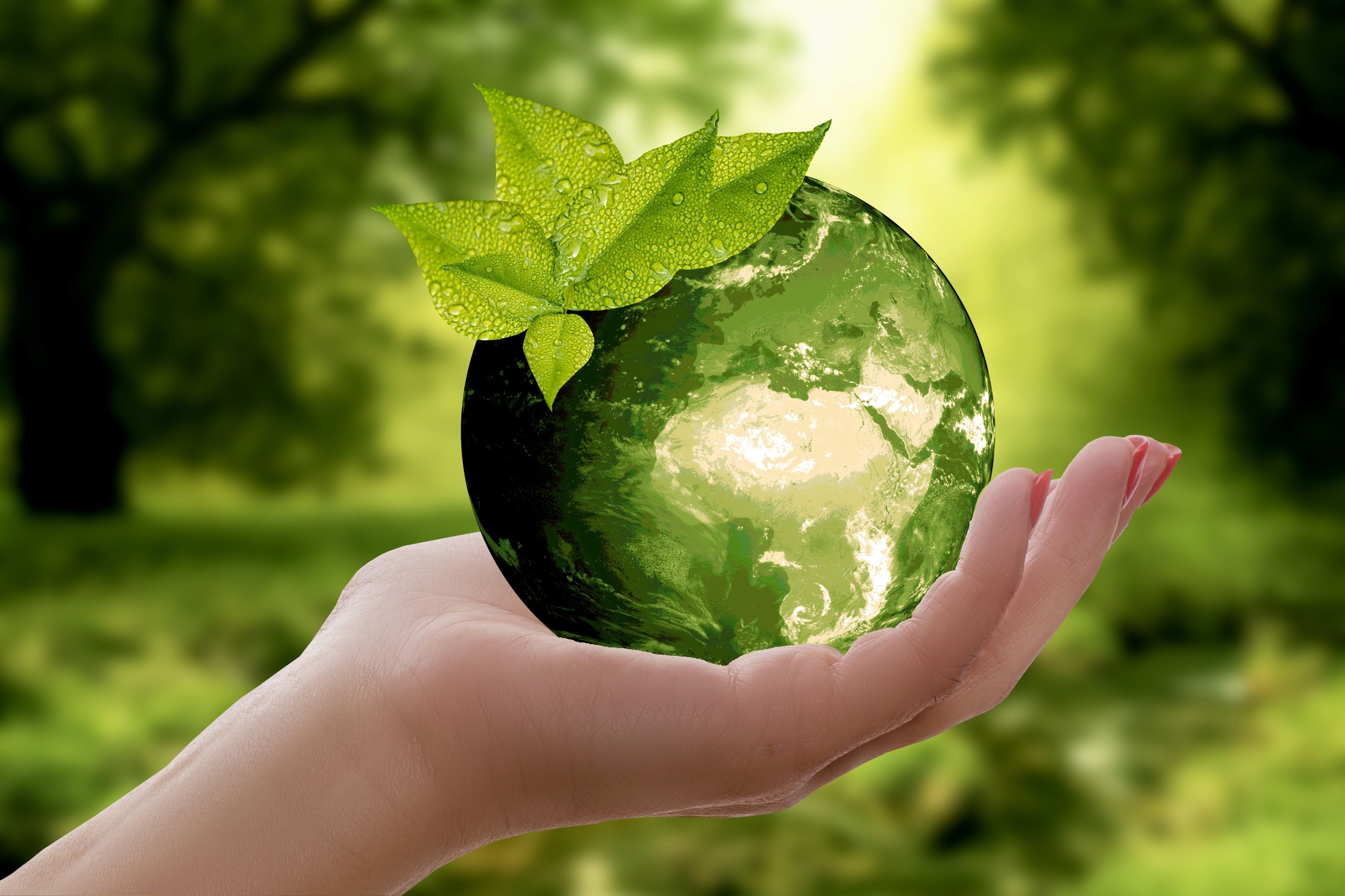 Las personas no sólo buscarán más verde sino que también priorizarán las construcciones sustentables