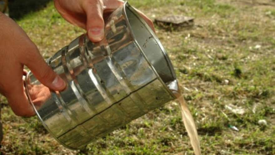 Para evitar que se críe el mosquito es importante eliminar el agua estancada