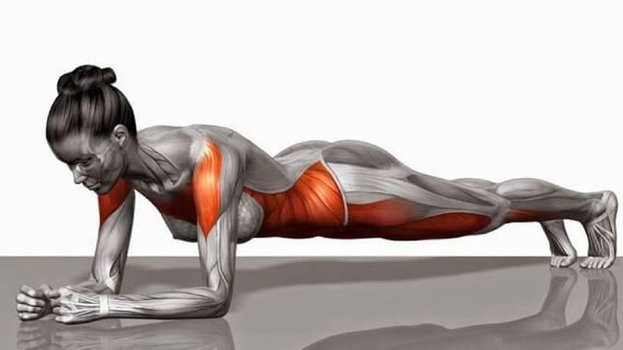 La plancha es uno de los ejercicios que se puede hacer en cuarentena