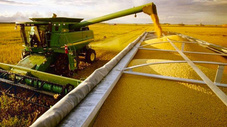 La carga impositiva sobre la soja es cada vez mayor.