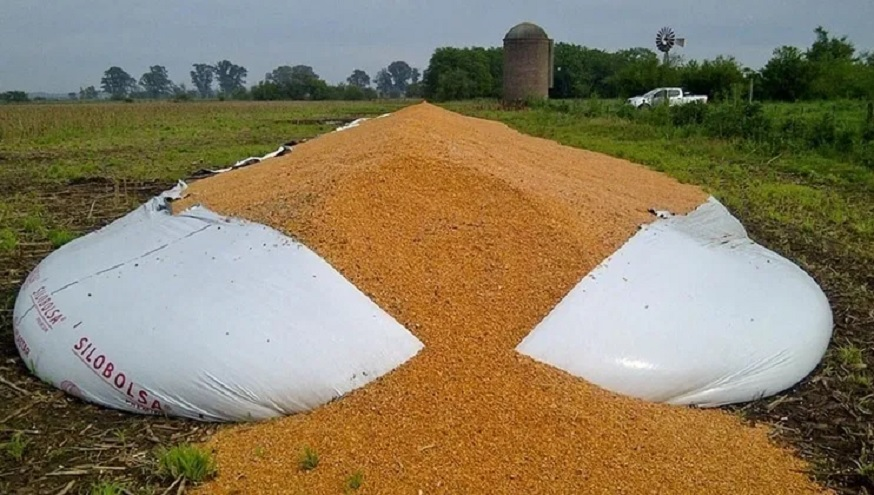 Rompen un silobolsa y se roban 30 toneladas de soja