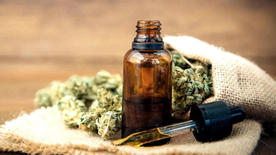 Cannabis medicinal: La Rioja espera un rápido desarrollo de la exportación.