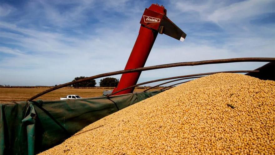 Una mayor inflación global alienta expectativas de suba en los precios de productos agrícolas que exporta Argentina
