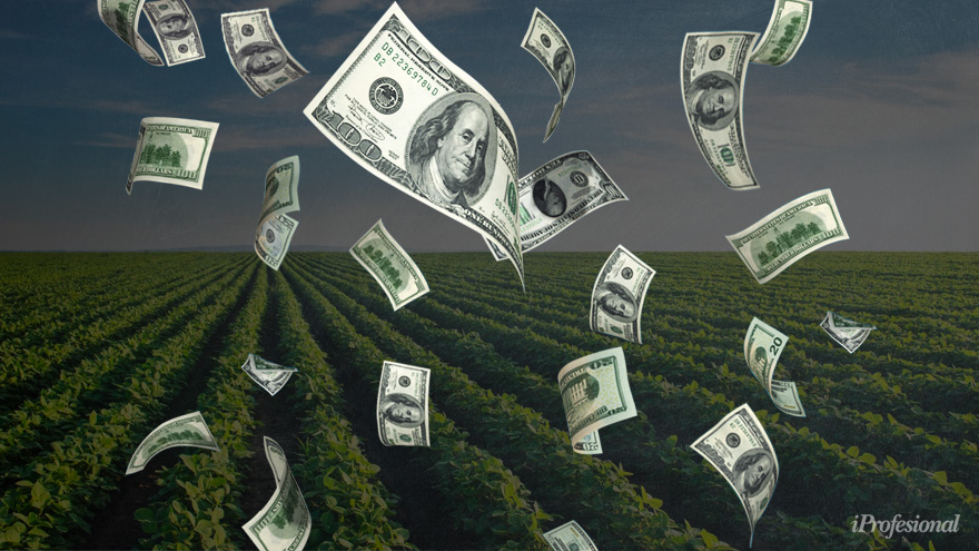 Tras el conflicto por Vicentin, el Presidente plantea un plan para el estímulo a la exportación agrícola