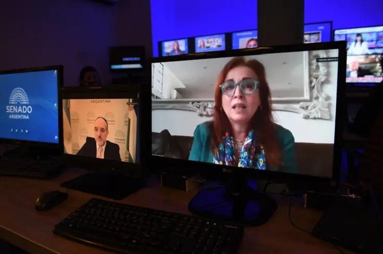 La fiscal Gabriela Boquín expuso la semana pasada en el Senado