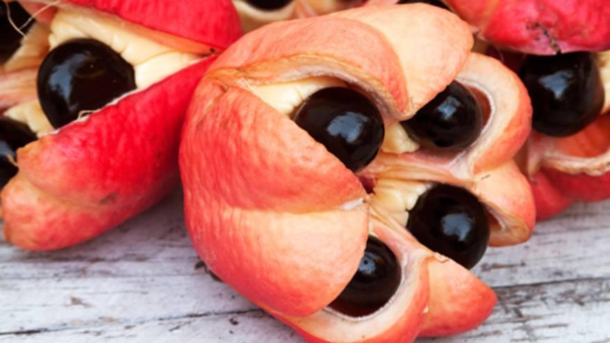 Esta es ta fruta ackee