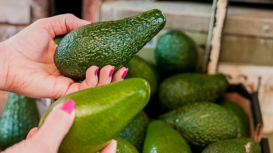 Una de las variedades de palta tiene su cáscara de un color verde intenso