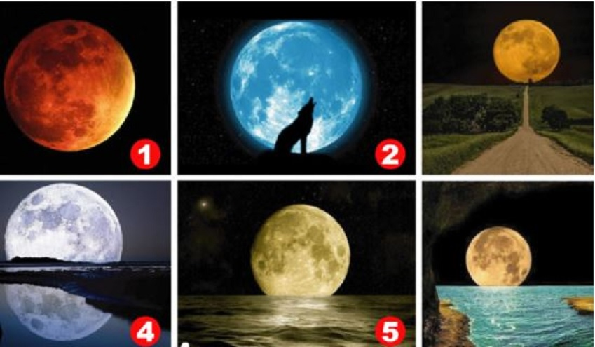 ¿Qué luna elegís?