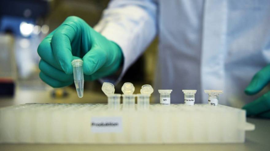 La vacuna de Oxford se producirá en Argentina, pero por el momento los estudios están suspendidos