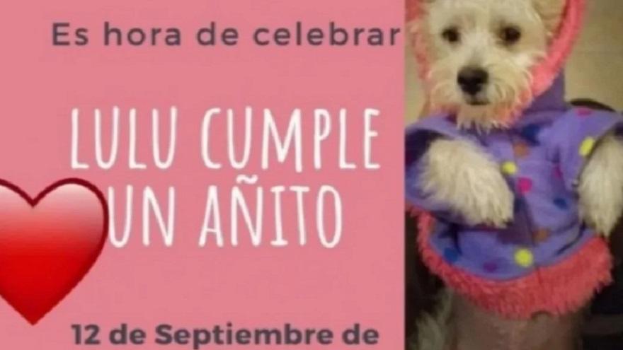 La invitación para el cumpleaños de Lulu