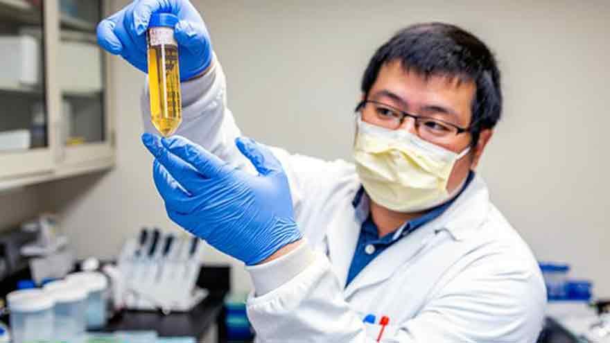 Se espera una vacuna contra la Covid-19 para fin de año, según la OMS.