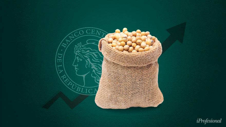 El Gobierno estima que hay unos u$s6.600 millones en soja sin vender