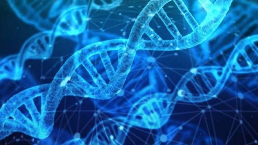 La enfermedad aparecería por una mutación genética