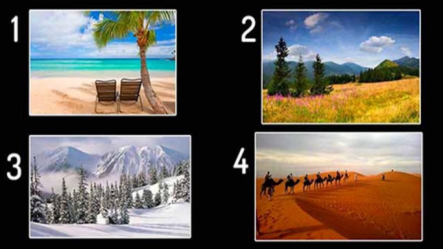 Estas son las imágenes que podés elegir