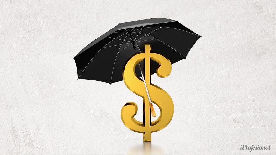 El instrumento más rendidor del año para proteger los ahorros terminó siendo el dólar.