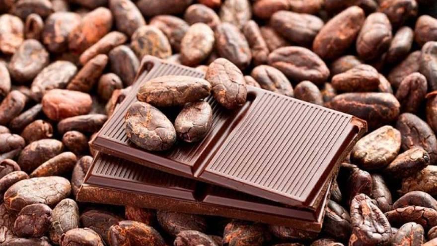 Comer chocolate puede ayudar a la memoria