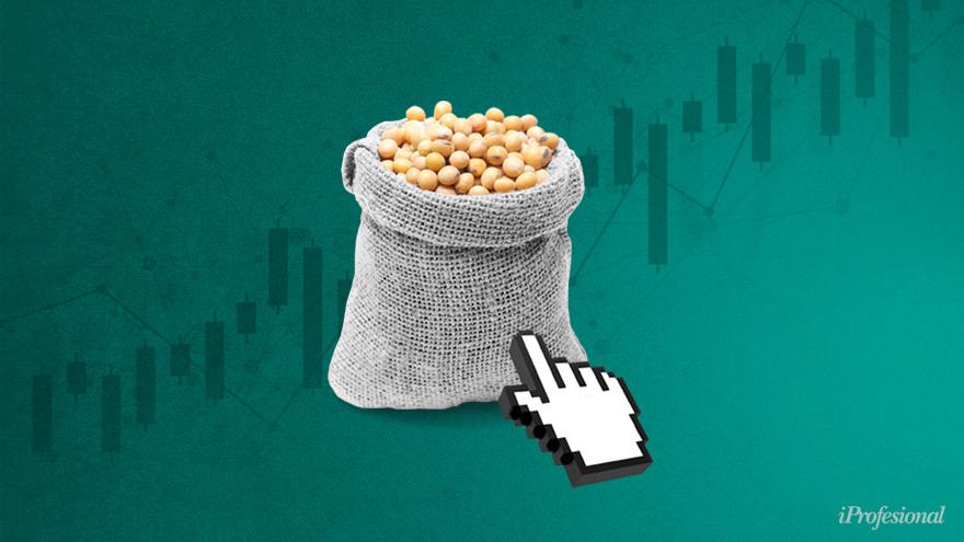 Consecuencia directa del dólar debilitado, la soja inició una espiral ascendente