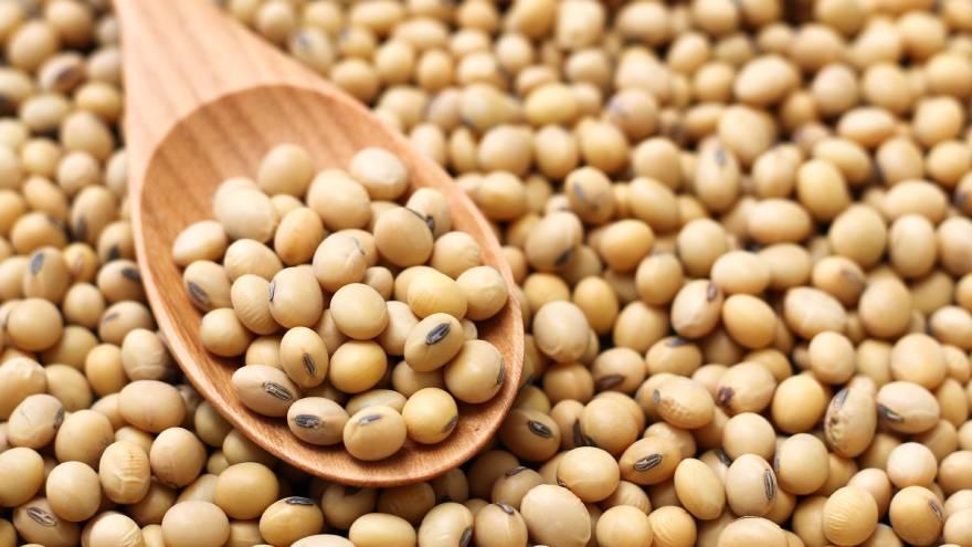 Los productos a base de soja pueden ayudar a potenciar la serotonina