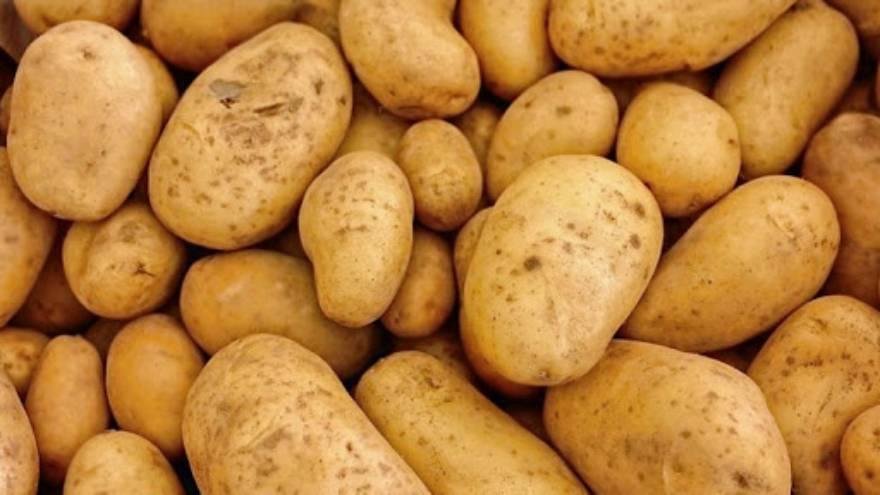 Las papas, obviamente, son el ingrediente central de la tortilla de papas