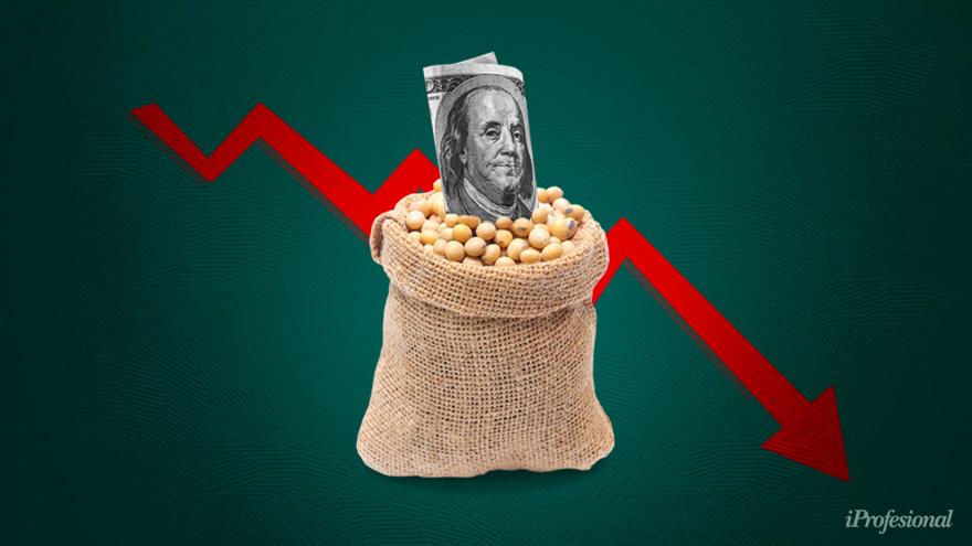 El boom sojero vuelve a plantear la paradoja argentina: trae divisas, pero también tensión inflacionaria