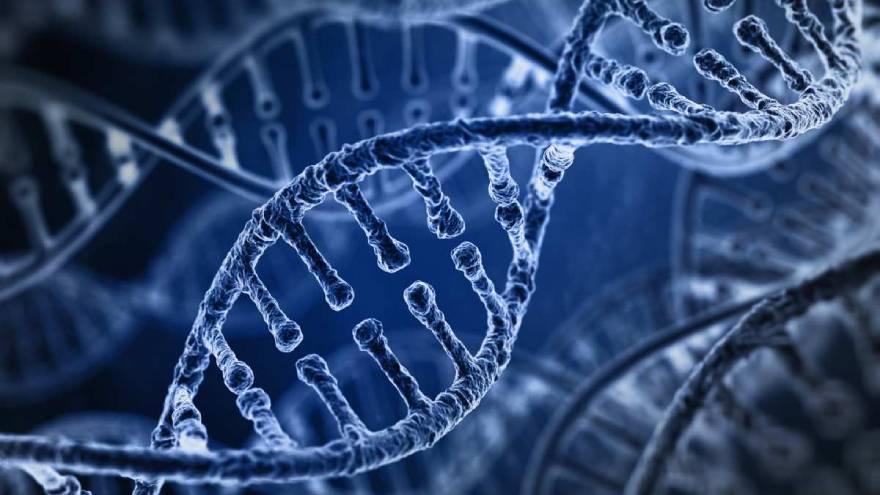 Hay virus mucho más peligrosos que el COVID-19 que ya preocupan a los científicos