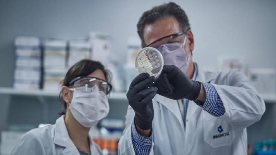 Suero equino hiperinmune: Pruebas de laboratorio confirman capacidad neutralizante contra variantes antigénicas Manaos y Británica