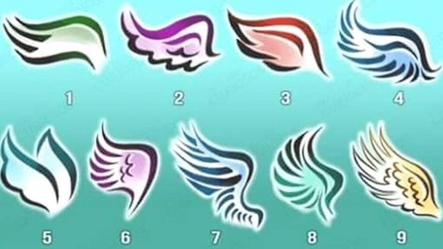 Las alas para elegir en el test
