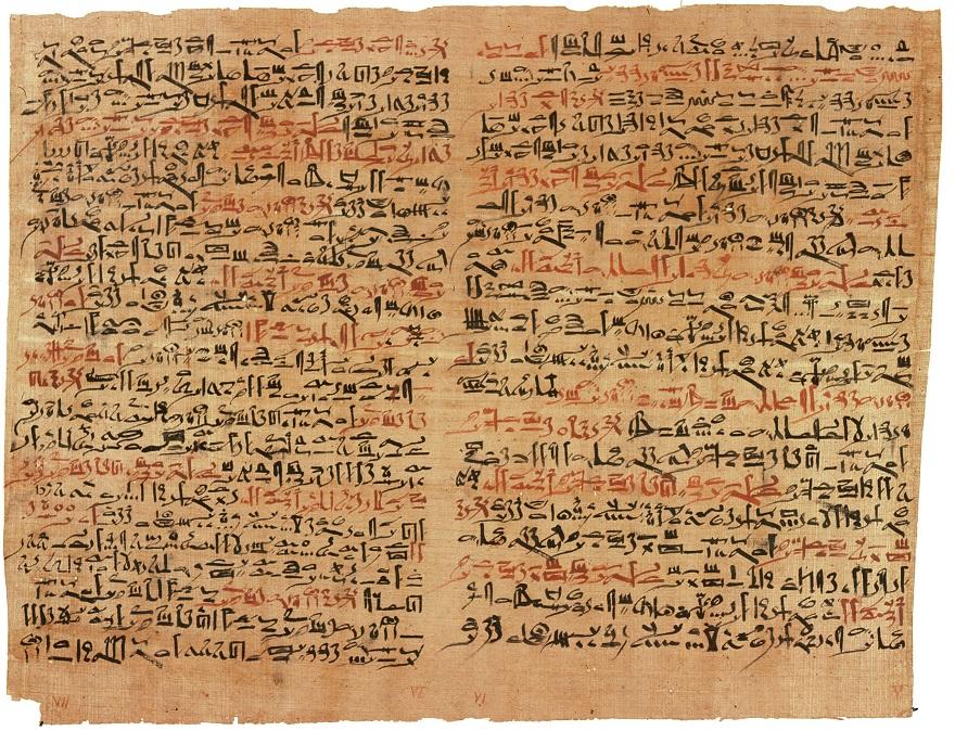 Un papiro egipcio de hace 3.500 años hablaba sobre la colchicina