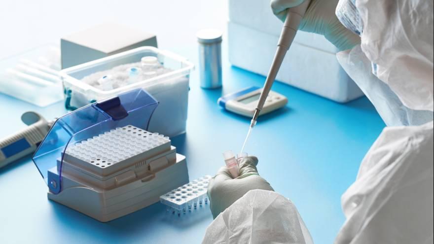 Los expertos estudiaron el origen de la pandemia