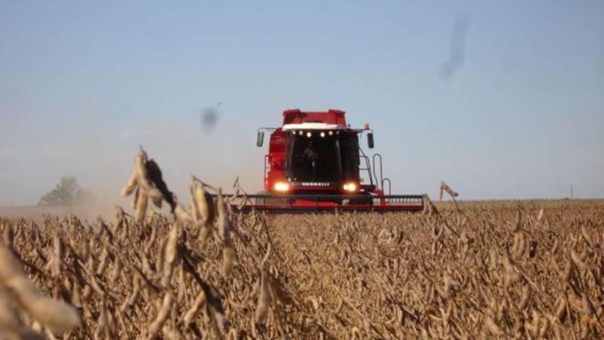 Estados Unidos no pone límites a la compra de tierras por parte de extranjeros y carece de retenciones a la exportación de granos.