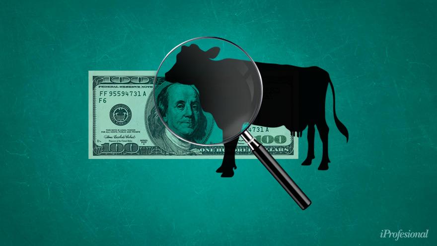 Ingreso de divisas del sector rural frena caída del peso en Argentina y retrasa reformas