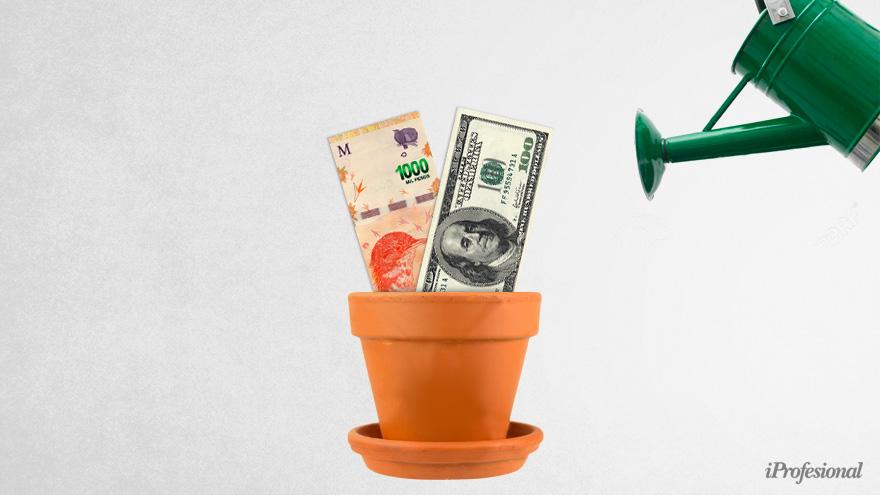 Algunos bancos ofrecen alternativas en pesos que siguen al dólar o a los precios de la economía.