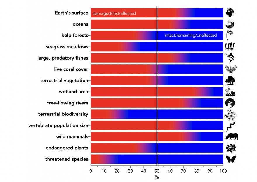 Impacto ecológico según la Universidad de Flinders, Stanford y UCLA