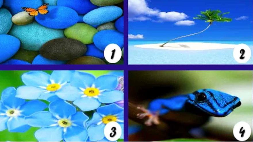 Si el azul es tu color preferido, este es tu test. Elegí una imagen y descubrí lo que revela sobre vos