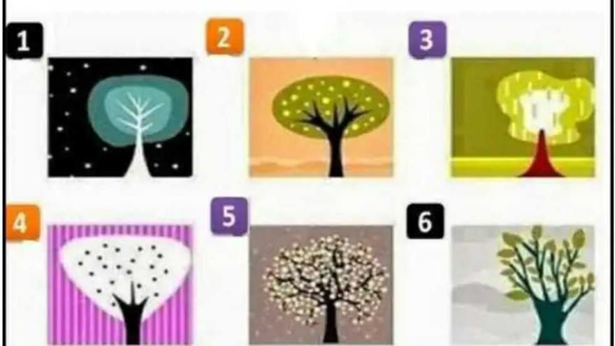 Mirá la imagen y elegí qué árbol te gusta más. El elegido revelará aspectos desconocidos de tu personalidad