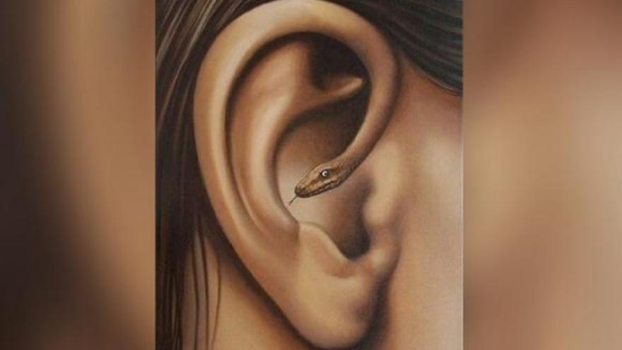 ¿Qué viste primero: una oreja o una serpiente?