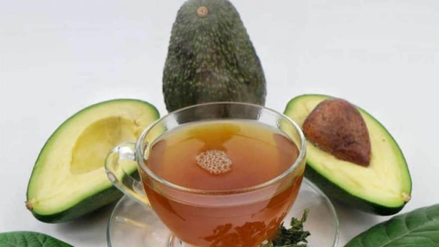 El té de carozo de palta tiene estos beneficios